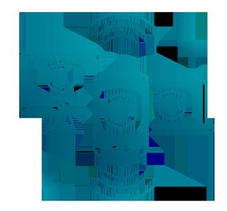 IT Security Services in Castelnau